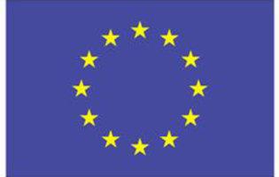 Leven In Europese Unie Wordt Makkelijker Voor Mensen Met Beperking
